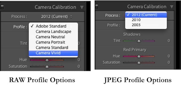 RAW and JPEG Profile Options