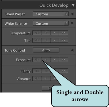 Quick Develop Single and Double arrows