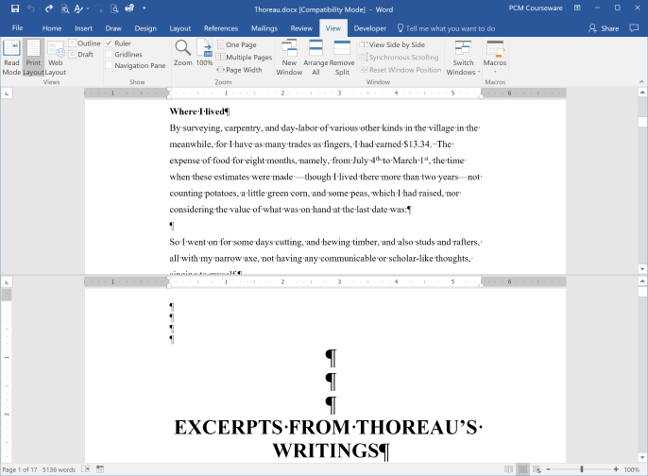 Word document in split-screen view