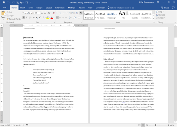 Document loaded in Word