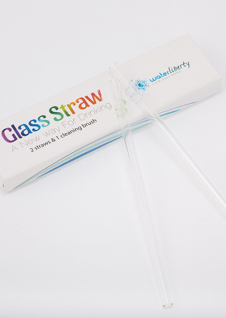 Glass Straw [Value Pack Special - 4 Straws & 2 Brushes]