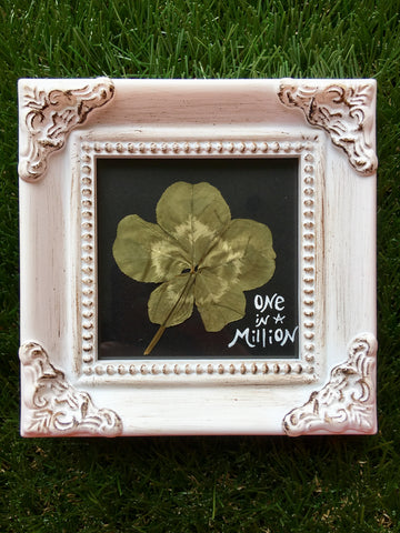 5-Leaf Clover w/ Antiqued White Frame