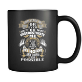 Anything Is Possible - Luxury Horse Mug