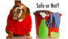 Are the products in your house safe for your pets?