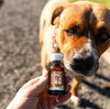 SHOP MEDIUM PET CBD