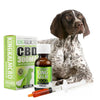 KING KALM™ CBD 300mg for German Shorthaired Pointers