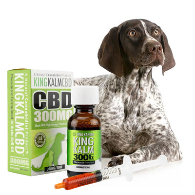 KING KALM™ CBD 300mg for German Shorthaired Pointer