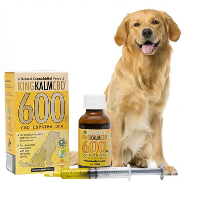 600mg CBD For Dogs Maine