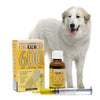 KING KALM 600mg CBD For Great Pyrenees
