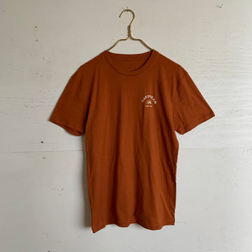 Daydream Moon Ray Tee in Brown