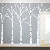 Birch Trees Silhouettes Forrest - Dana Decals