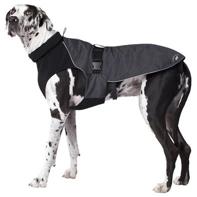 Canada Pooch Expedition Coat Charcoal WEBSITE ONLY (6073994182829)