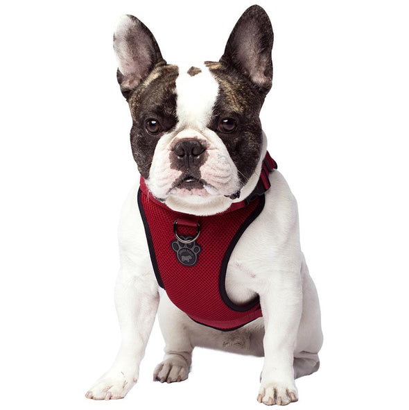 Canada Pooch Everything Harness Red