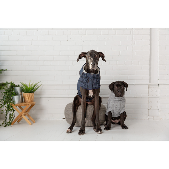 GF Pet Chalet Sweater WEBSITE ONLY (6074116505773)