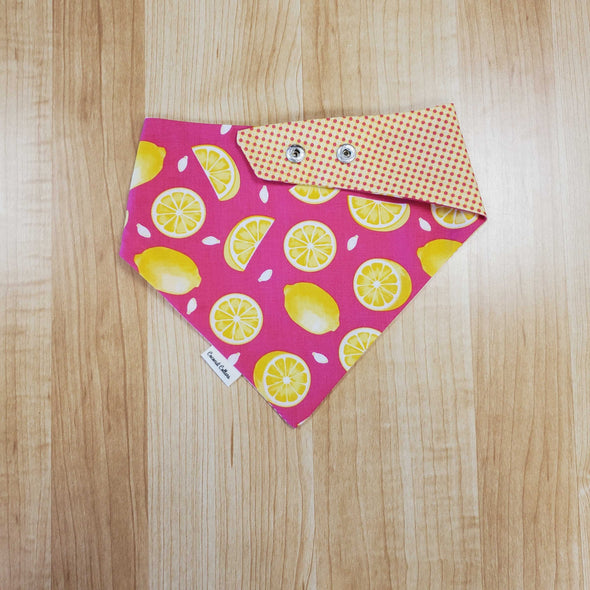 Coconut Collars Pink Lemonade Bandana (5787844575386)