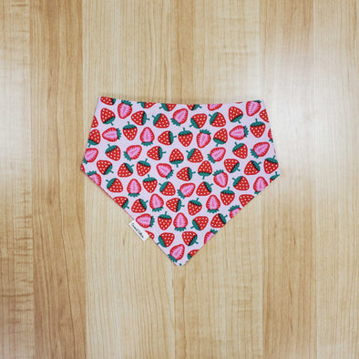 Coconut Collars Strawberries Bandana