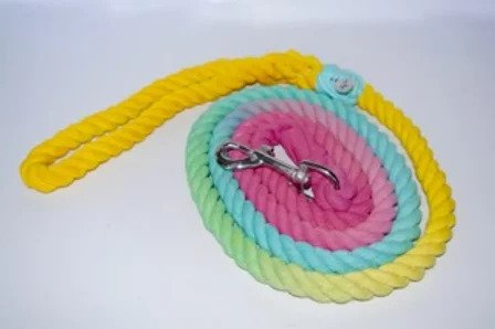 Poppy Dog Rainbow Sherbert Leash