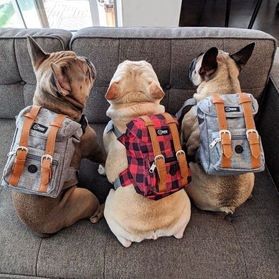 Bark Industry Dog Backpacks