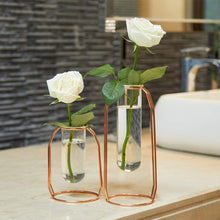 Load image into Gallery viewer, PuTwo Plant Vase Flower Vase Glass Vase Decorative Vases Set of 2 Ideal for Artificial Flowers Botanic - Gold