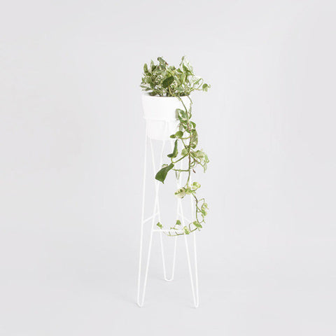 Hair pin plant stand white