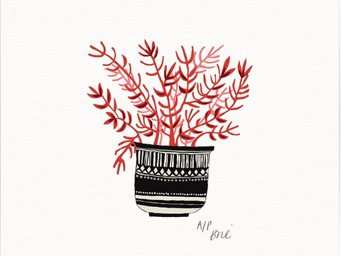 Coral Pot Giclée Print Limited Edition  - only 1 available