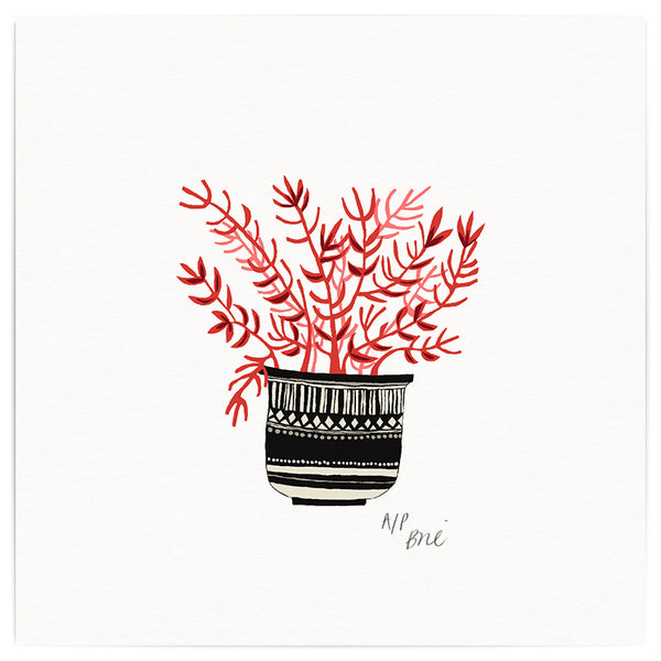 Coral Pot Giclée Print Limited Edition