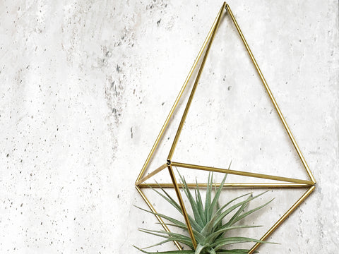 DIY Himmeli Wall Planter Facet Brass
