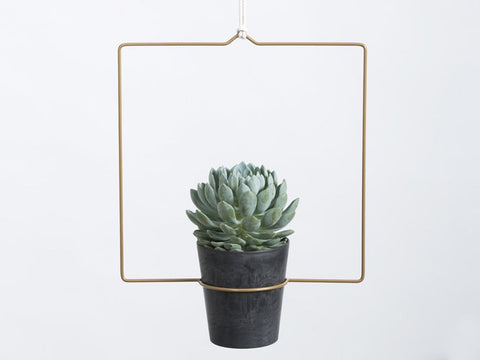 Hanging Planter  - Quadra