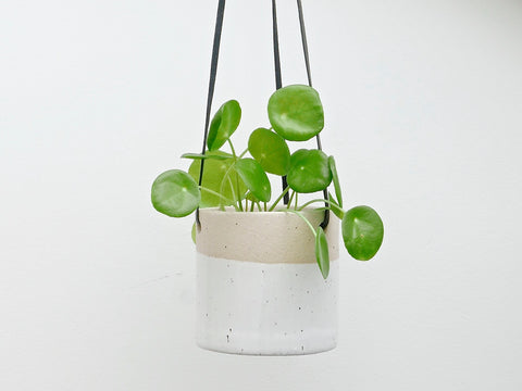 Ceramic Hanging Planter White