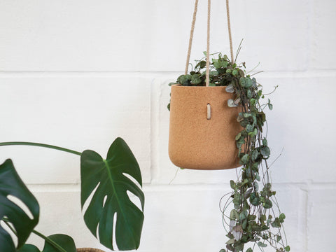 Hanging Cork Planter - Atlas