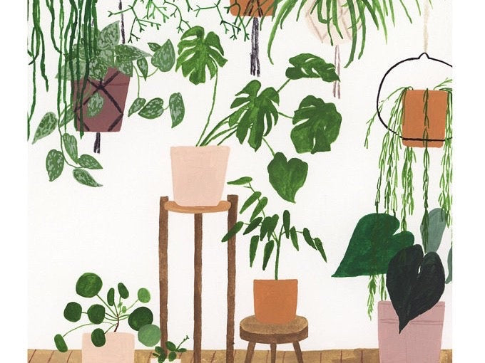 A4 Potted houseplant giclee print
