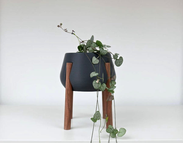 Planter with Walnut Legs