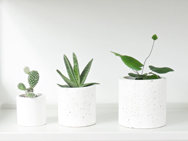Concrete Planter - Large