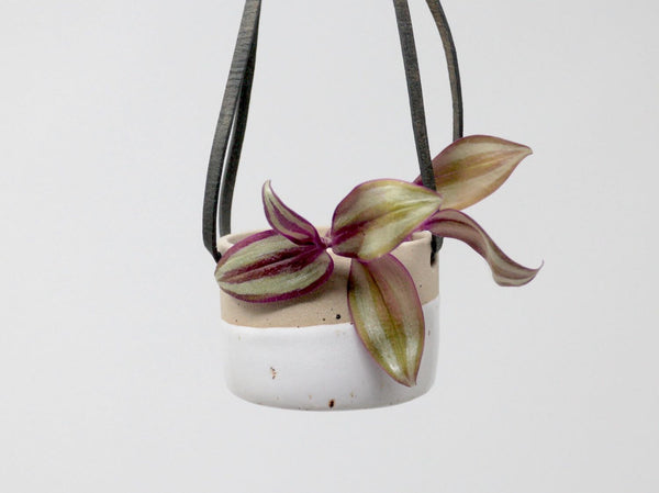 Ceramic Hanging Planter White Small