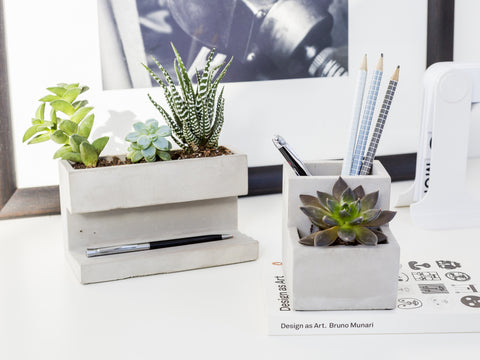 Concrete Desktop Planter and Organiser (Large)