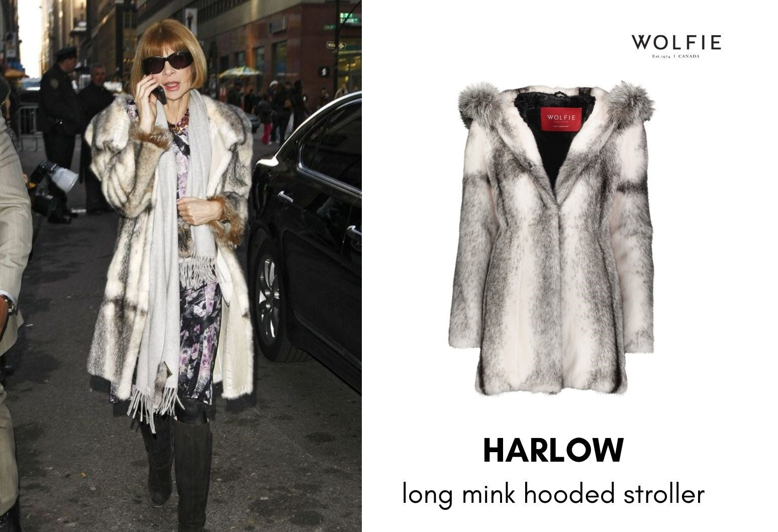 anna wintour mink coat