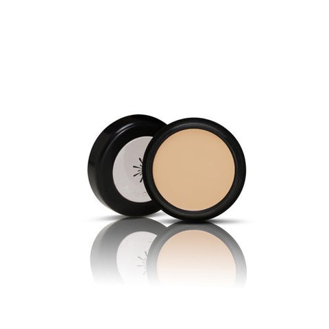 Missha - The Style Perfect Concealer
