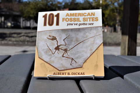 101 American Fossil Sites
