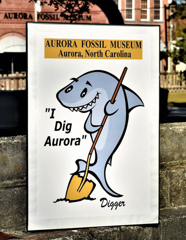 Aurora Fossil Museum poster with frame