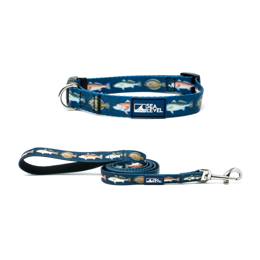 Texas Slam Collar and Leash Set (2 Color Options)