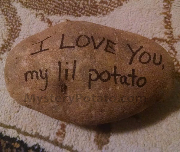 YouthFest 2016 Potato