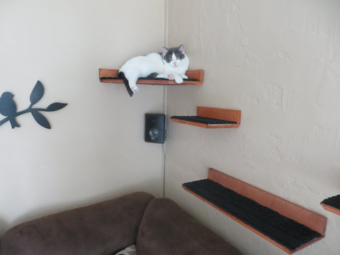 ... Floating Cat Shelf Set 4 pc. / Corner Perch with 1 Long, and 2 ...