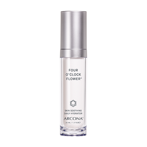 Arcona Four O'Clock Flower