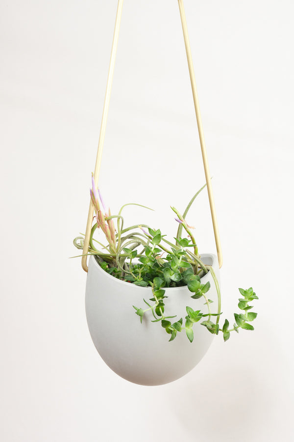 Light + Ladder Spora Planter in Angle Stone