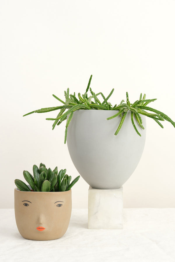 Light and Ladder ceramic planters