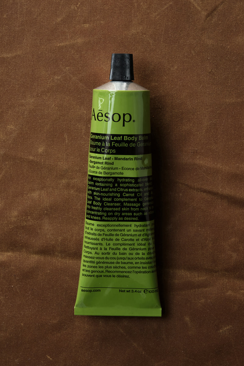 travel size aesop