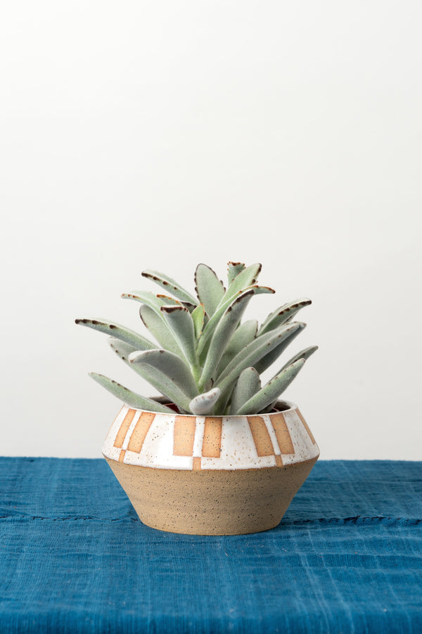 bkb ceramic planter in stock