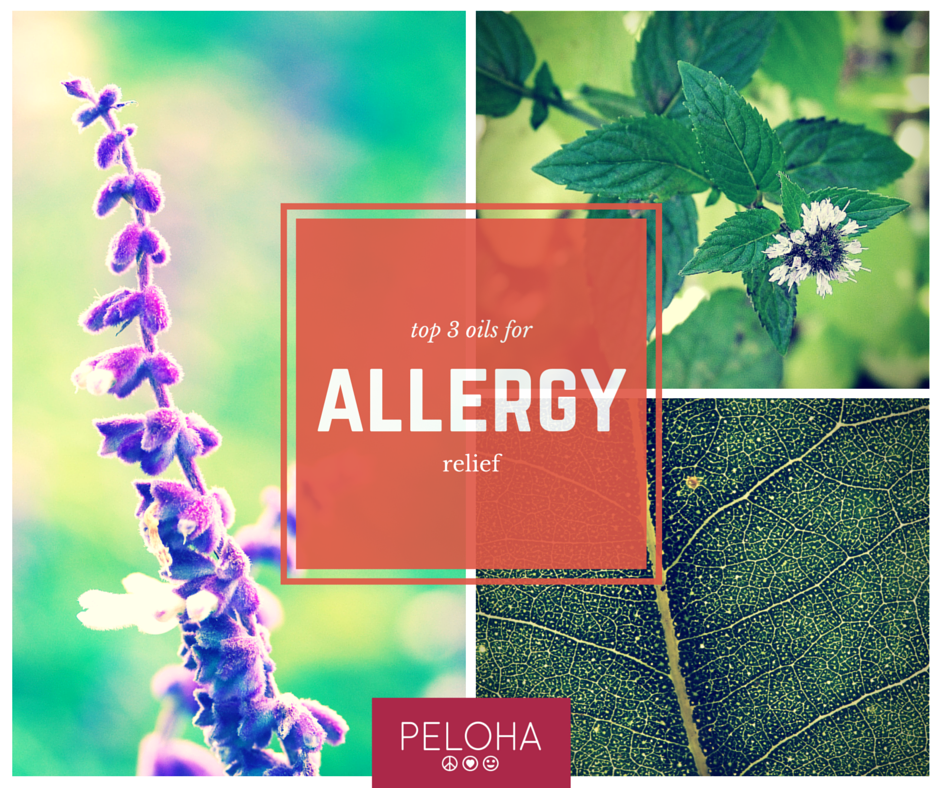 best essential oils for allergy relief