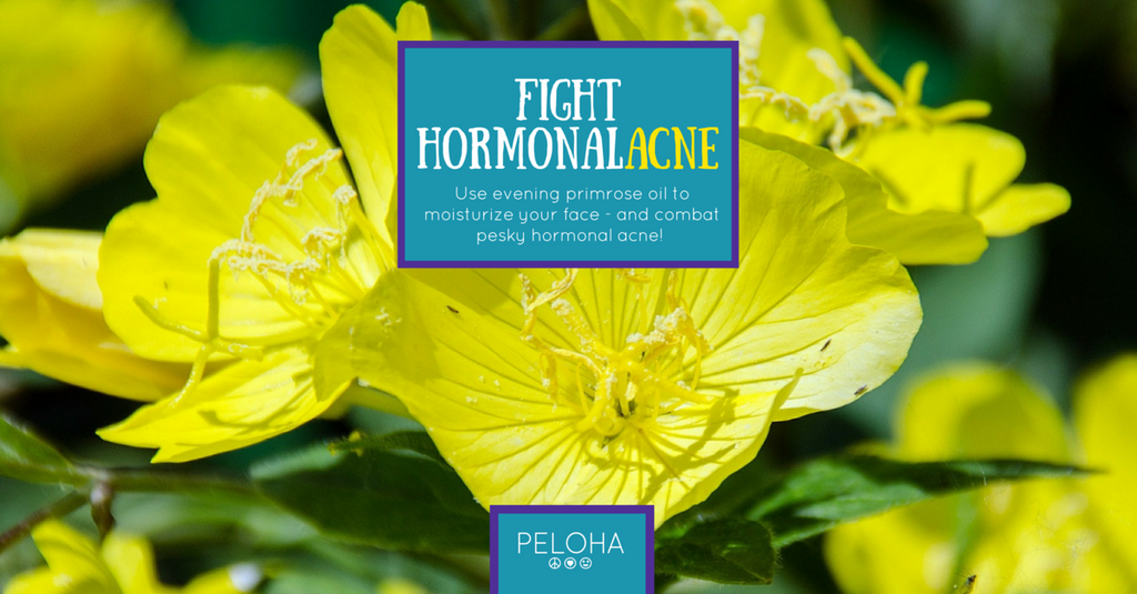 use evening primrose to fight hormonal acne