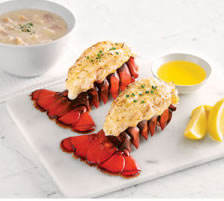 Lobster Tails & Chowder